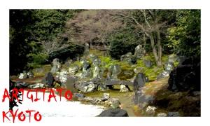 Kyoto Japon 7