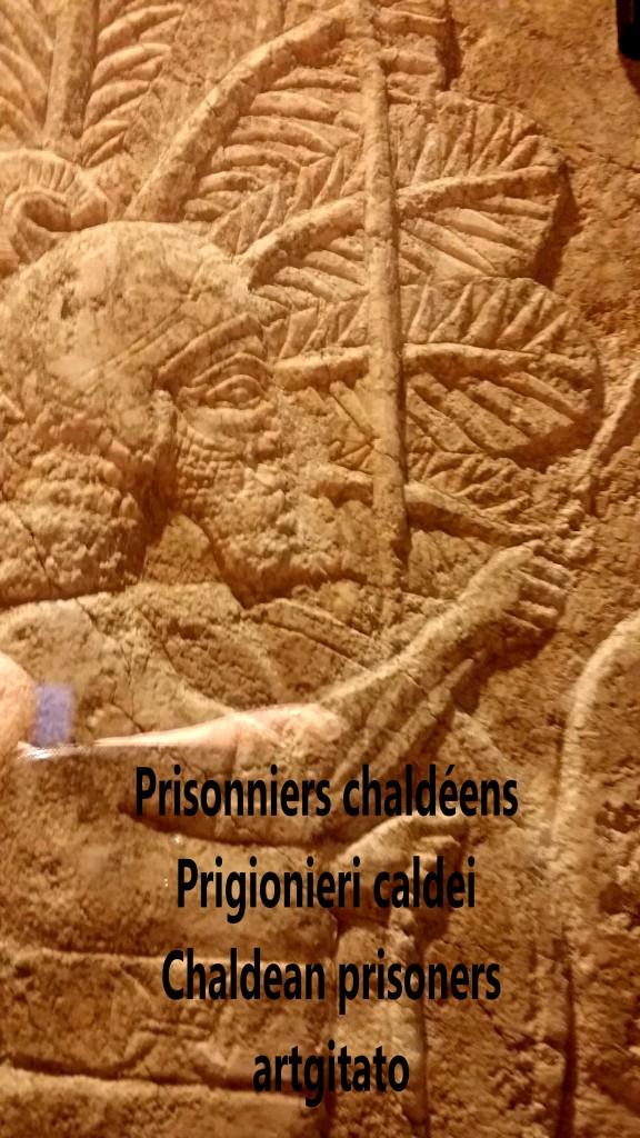 Prisonniers chaldéens conduits dans une palmeraie artgitato