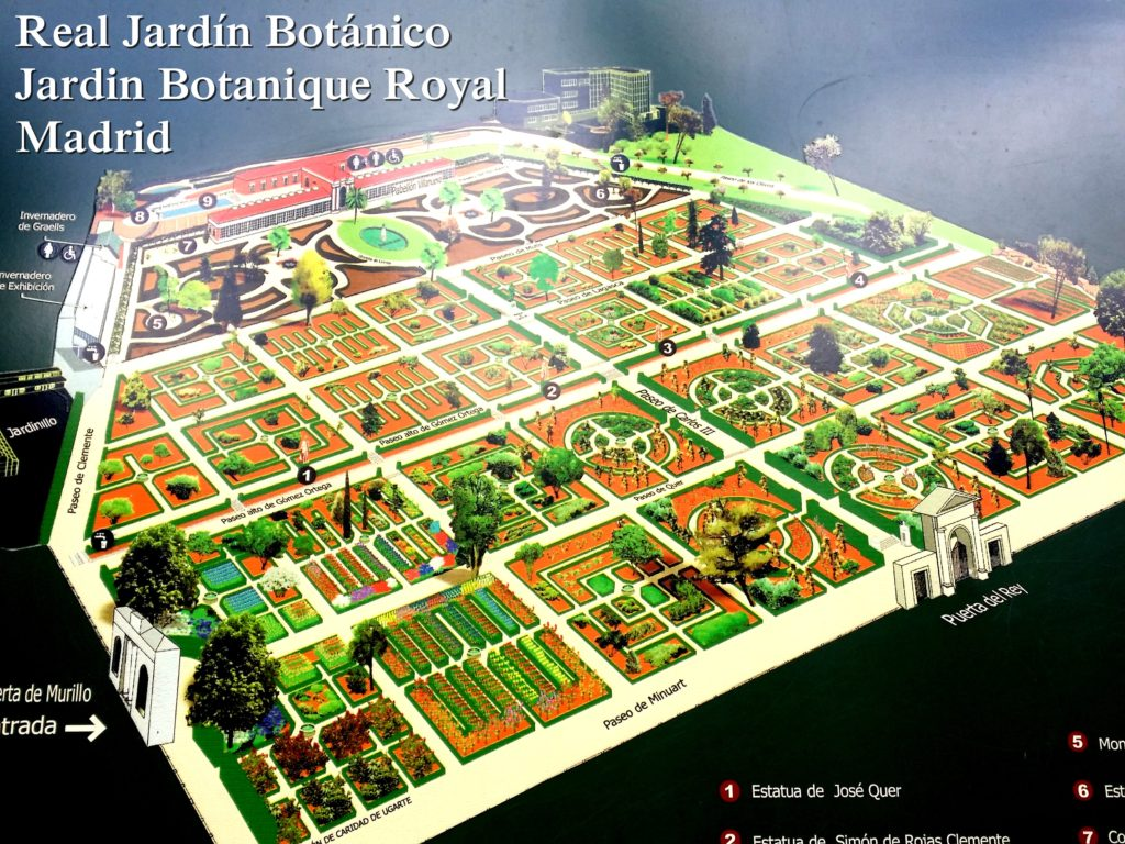 Madrid Espagne Real Jardín Botánico Jardin Royal Botanique artgitato Plan Plano