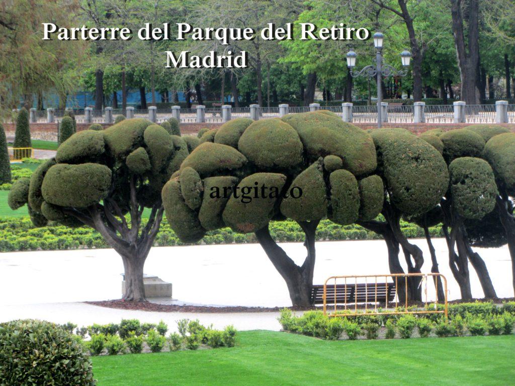 Parterre del Parque del Retiro Madrid Artgitato (13)