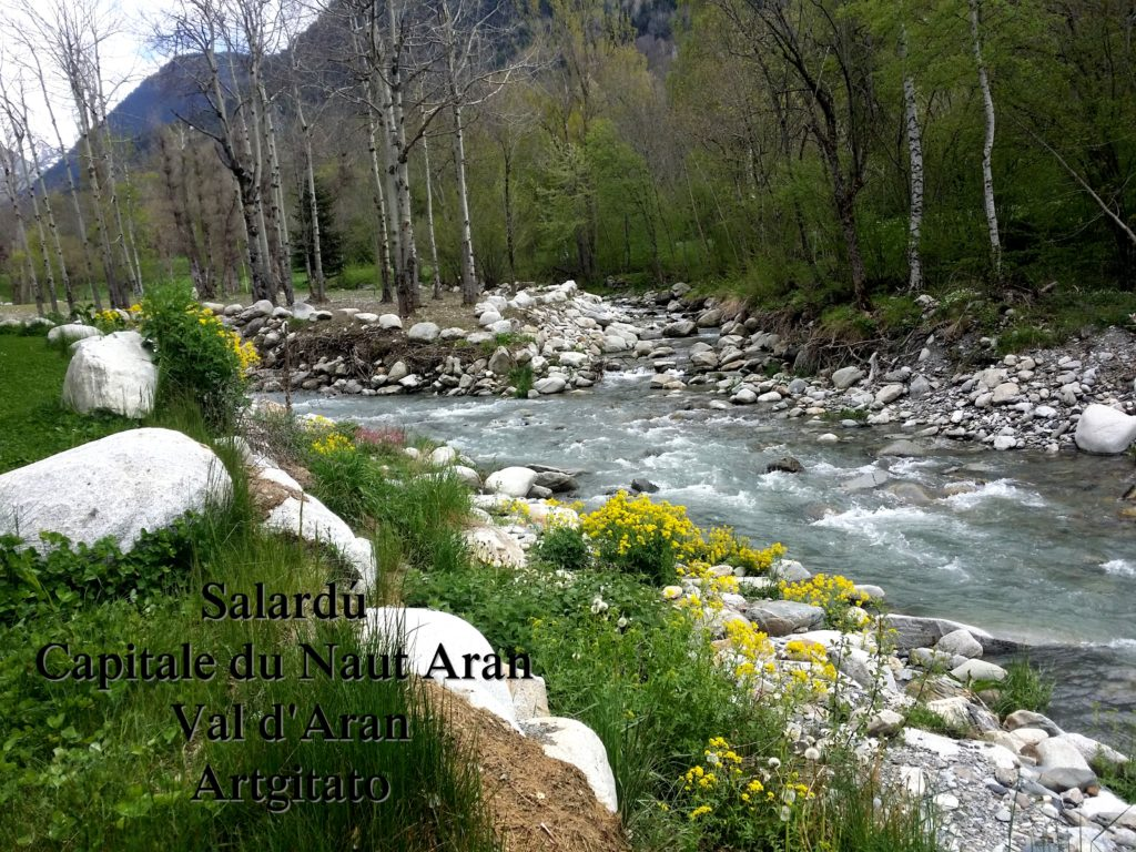 Salardú Capitale du Naut Aran Val d'Aran Artgitato Pyrénées Espagne 27