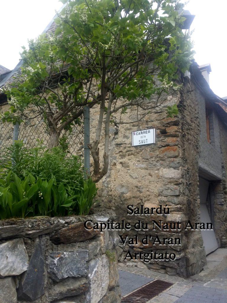 Salardú Capitale du Naut Aran Val d'Aran Artgitato Pyrénées Espagne 6