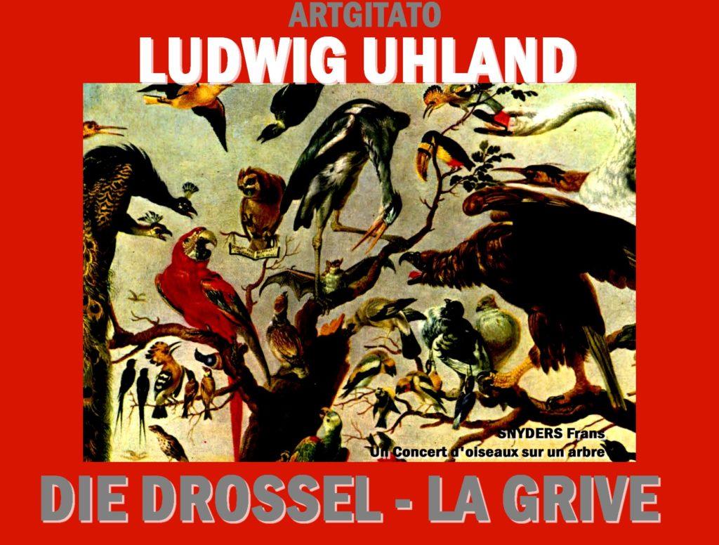 DIE DROSSEL LA GRIVE Ludwig Uhland Artgitato SNYDERS Frans Un Concert d'oiseaux sur un arbre
