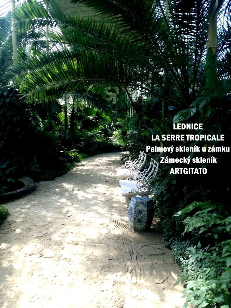 LEDNICE LA SERRE TROPICALE - Palmový skleník u zámku - Zámecký skleník Artgitato (24)