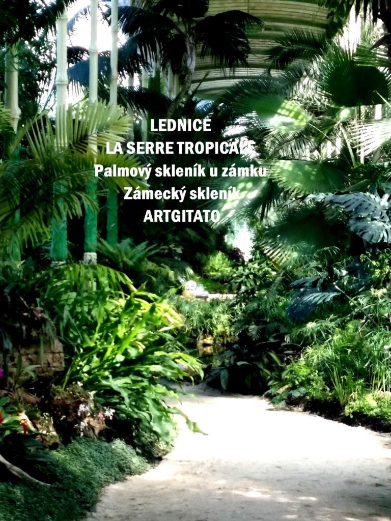 LEDNICE LA SERRE TROPICALE - Palmový skleník u zámku - Zámecký skleník Artgitato (29)