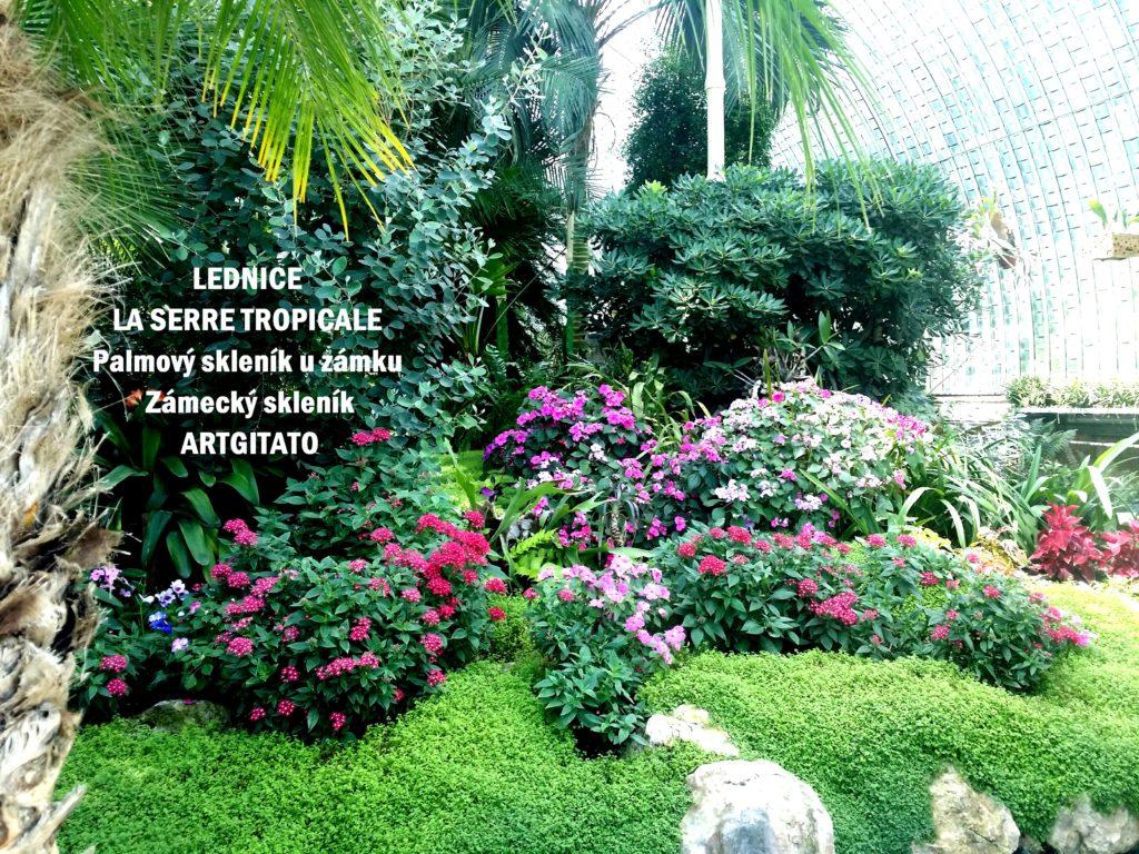 LEDNICE LA SERRE TROPICALE - Palmový skleník u zámku - Zámecký skleník Artgitato (4)