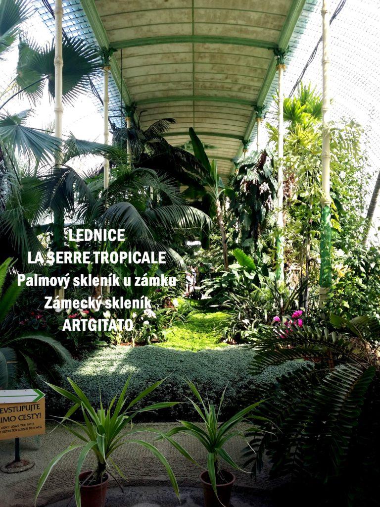 LEDNICE LA SERRE TROPICALE - Palmový skleník u zámku - Zámecký skleník Artgitato (5)