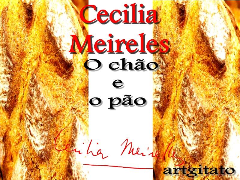 O chão e o pão Poema de Cecilia Meireles Le sol et le pain Poeme de Cecilia Meireles Artgitato