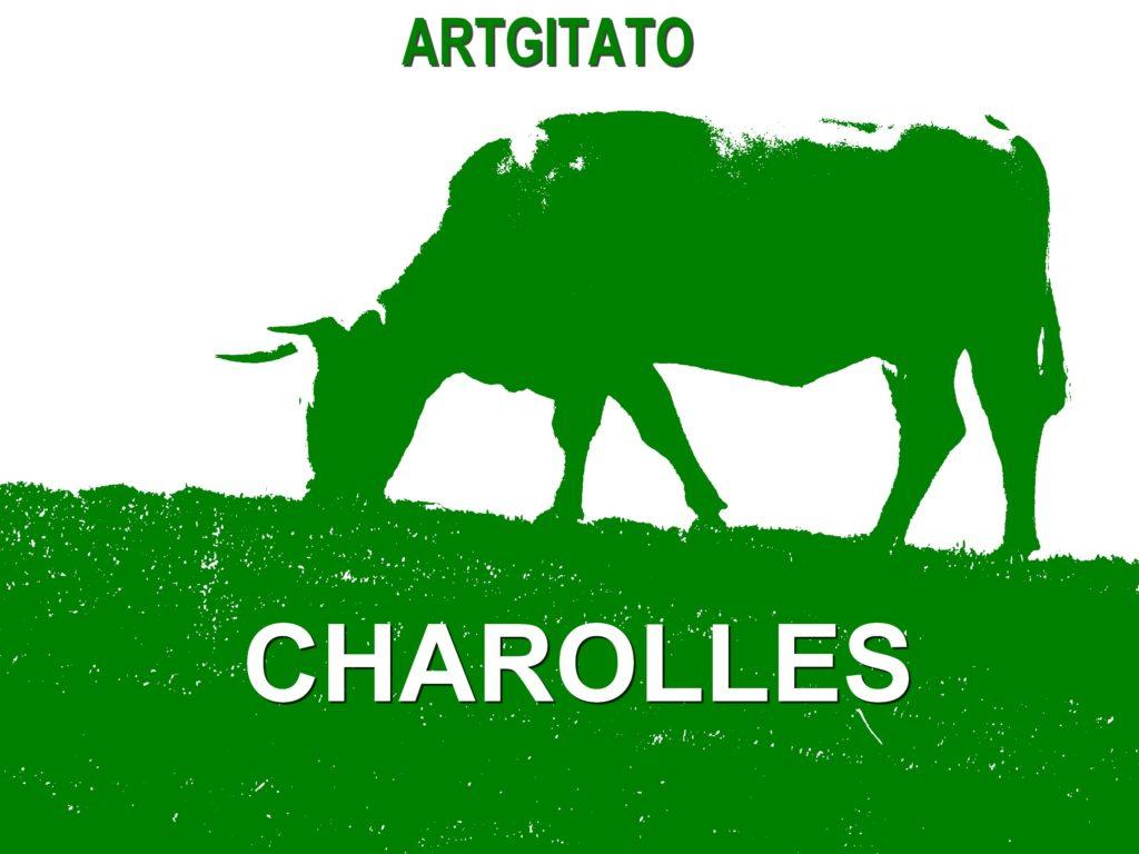 Charolles Bourgogne Artgitato