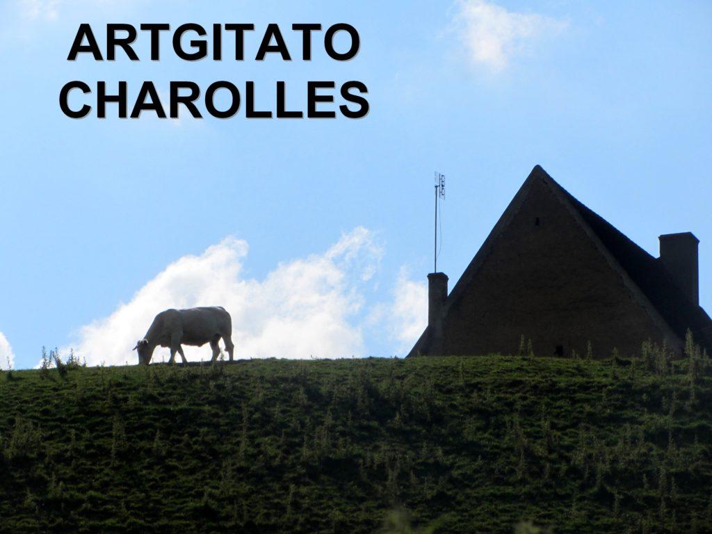 Charolles Bourgogne Artgitato (15)