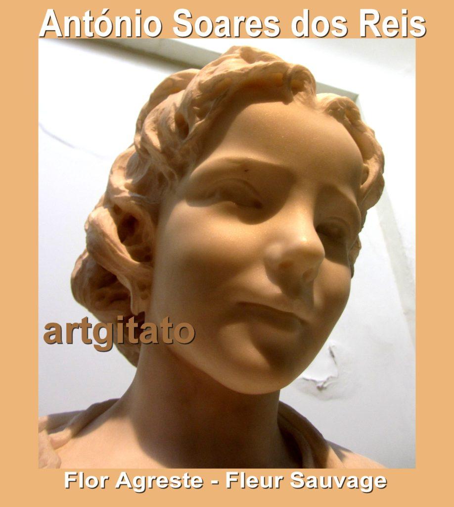 antonio-soares-dos-reis-flor-agreste-fleur-sauvage-artgitato-0