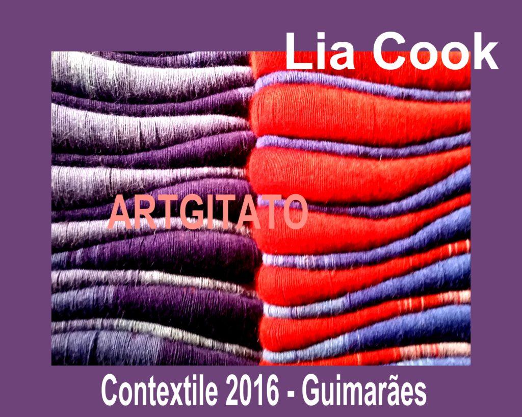Photo Jacky Lavauzelle contextile-2016-lia-cook-artgitato-4-guimaraes