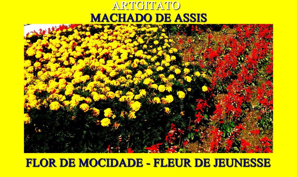 flor-de-mocidade-artgitato-machado-de-assis-fleur-de-jeunesse
