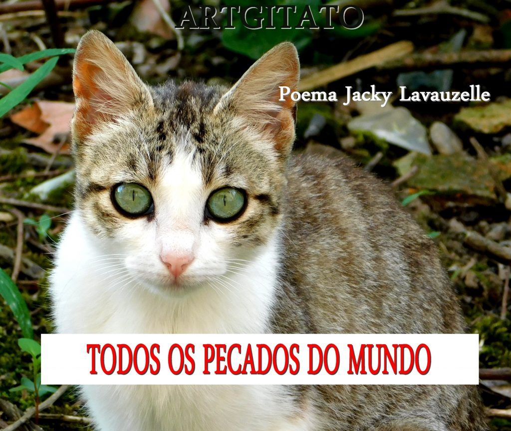 TODOS OS PECADOS DO MUNDO - Poema Jacky Lavauzelle