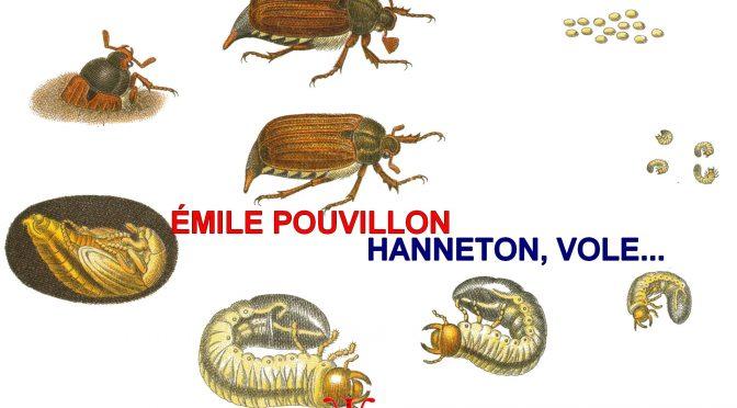 HANNETON, VOLE…  –  ÉMILE POUVILLON